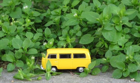 My yellow VW bus